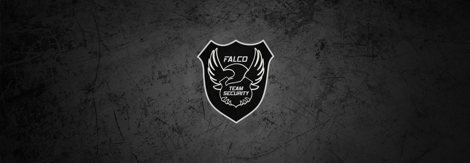 falco_logo_banner_homepage4